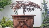 Фонтан-дерево «Асер» (Aser height)