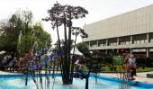 Фонтан-дерево «Амазония» (Amazonia Tree)